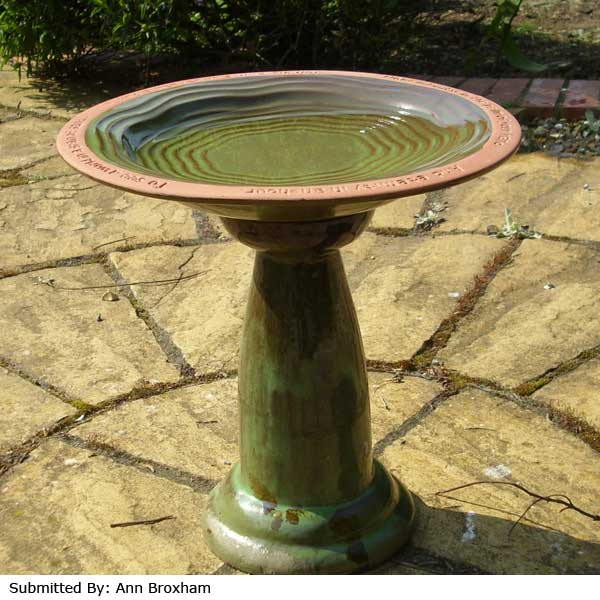 Echoes Bird Bath Stand On Sale Fast Delivery