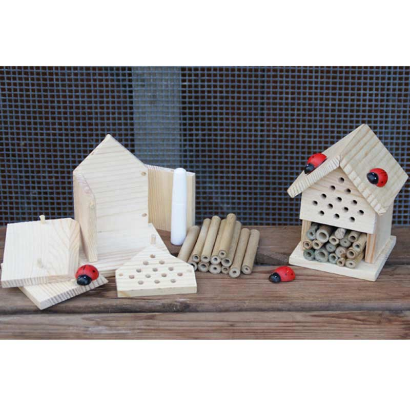 Make Your Own Insect House On Sale Fast Delivery