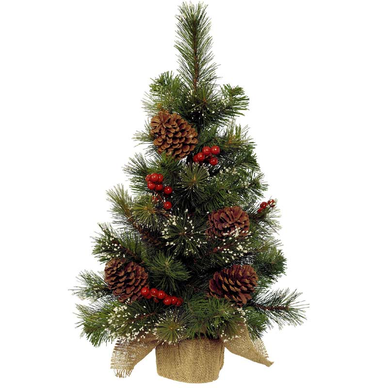 Best 28 Small Christmas Tree Delivery Mini Christmas