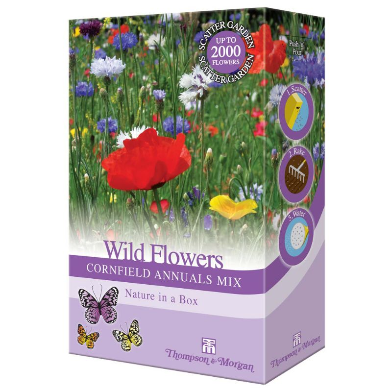 thompson and morgan wild flower cornfield annuals mix 15g. Black Bedroom Furniture Sets. Home Design Ideas