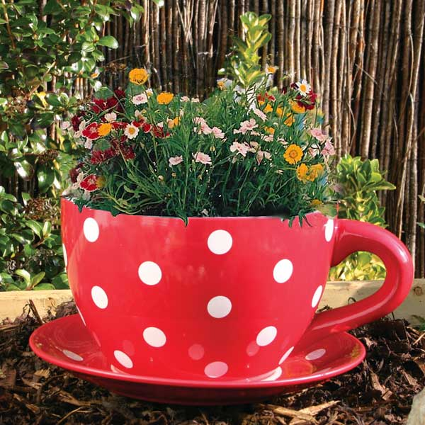 Customer Reviews For Botanico Cup And Saucer Planter