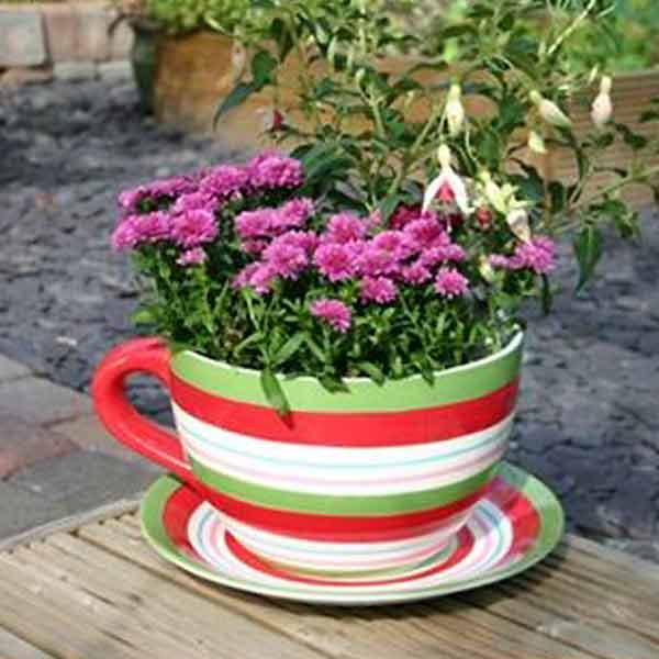 Customer Reviews For Botanico Striped Cup And Saucer Planter