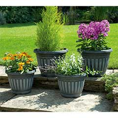 Georgian Style Black Planters - 4 Pack