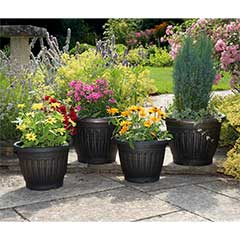Georgian Style Antique Gold Planters - 4 Pack