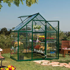Palram Harmony Clear Glazing Greenhouse - Green