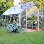 Palram Balanced Merged Polycarbonate Glazing Greenhouse 8 x 12
