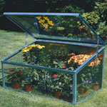 Parasene Single Lid Cold Frame