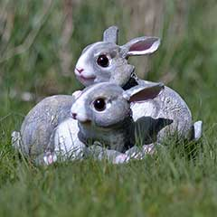 Greenfingers Pair of Rabbits Decoration