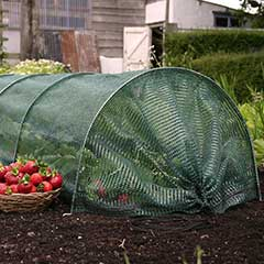 Haxnicks Easy Net Tunnel - 300cm