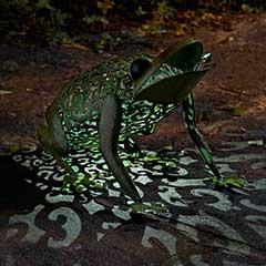 Smart Garden Frog Solar Light - 33cm