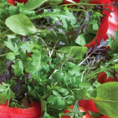 Seed Tape Salad Leaves Speedy Mix - 80 Seeds