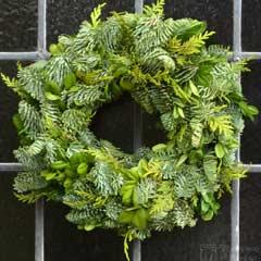 Thompson & Morgan Plain Christmas Wreath - 30cm