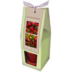 Spring Bulbs - Strawberry Gift Set