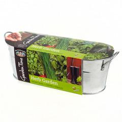 Mr Fothergills Windowsill Kit - Herb Garden