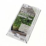 Johnsons MicroGreens Growing Kit - Basil, Coriander & Marjoram