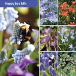 Javado Help Nature Happy Bee Mix - 80 Bulbs