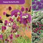Javado Help Nature Happy Butterfly Mix - 40 Bulbs