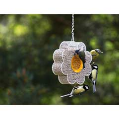 Chapelwood Fun Bird Feeder - Daisy