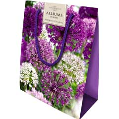 Taylors Colourful Allium Mix - Gift Bag of 20 Bulbs