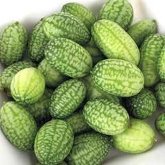 Thompson & Morgan Cucamelon Fruit Seeds