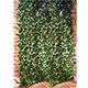Laurel Leaf Trellis - 90 x 180cm