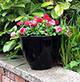 Apta Glaze Lite Egg Plant Pot 31cm diameter